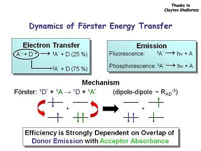 Forster Energy Transfer Energy Etfs